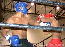 Ulip punching Saragosa